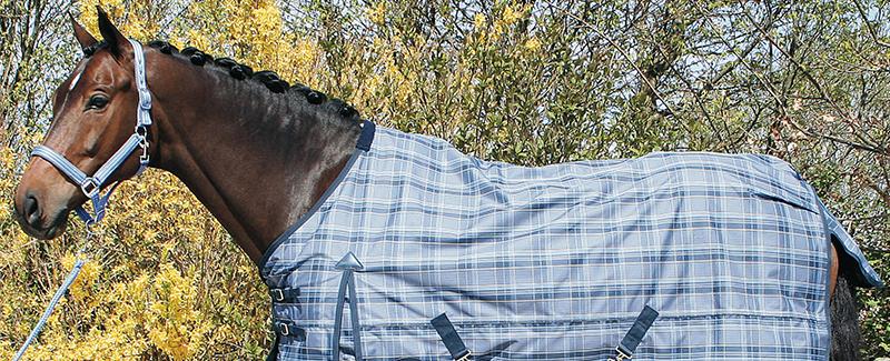 Jouw paardendekens snel en professioneel gereinigd